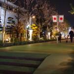 鎌倉夜桜散歩