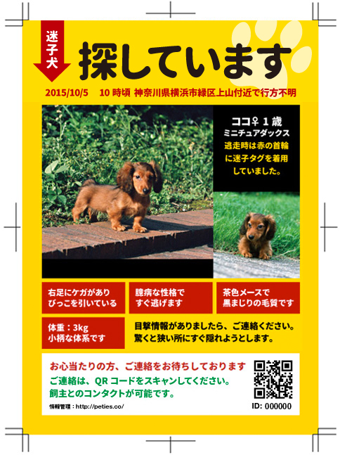 crop_flyers