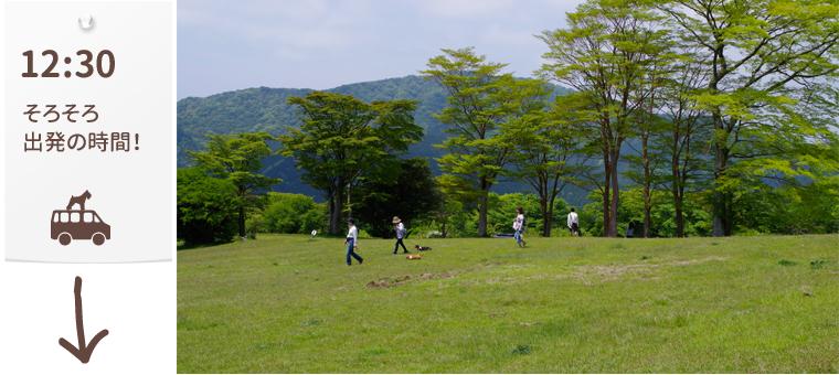 1605_Fujiashinoko_panoramapark04