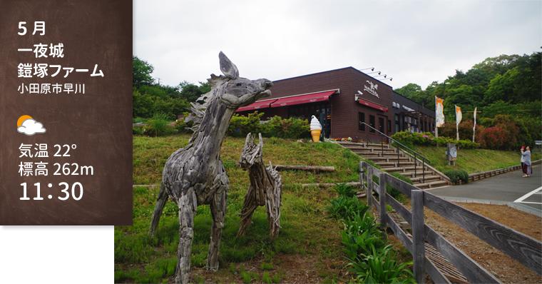1605_odawara_yoroizuka-farm01