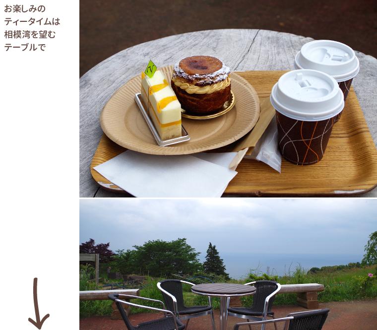 1605_odawara_yoroizuka-farm06