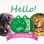 犬猫兼用の迷子札スタンダード。期間限定キャンペーン実施中!