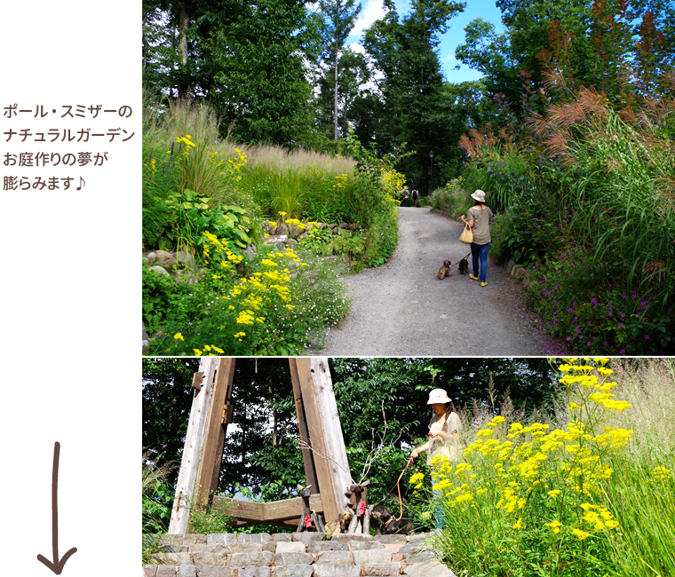 dog_trip05-02_garden_09
