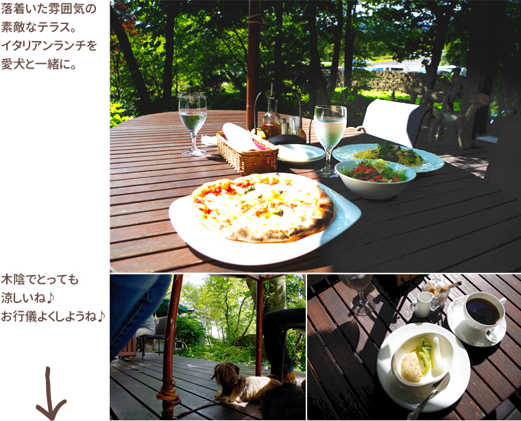 dog_trip05-02_kiyosato_lunch_08