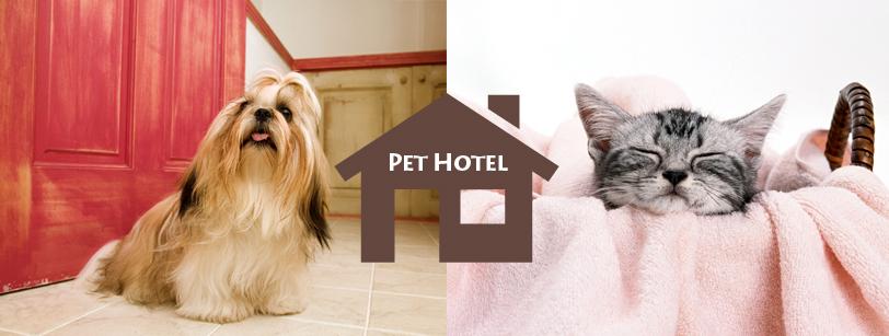column_pet_hotel