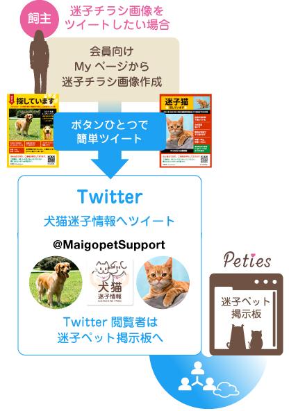 illust_flyer_twitter