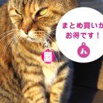 猫さんに人気の迷子札まとめ買いセットが新発売