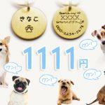 戌年スペシャル企画!迷子札1111キャンペーン!